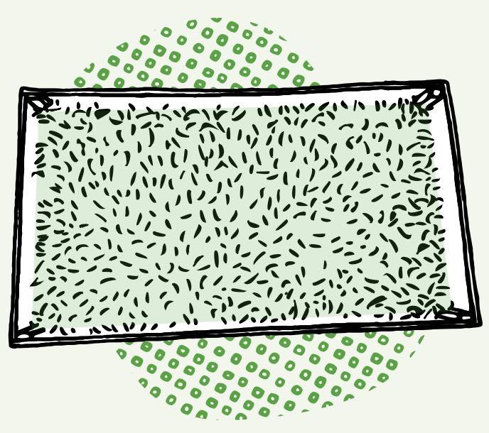 Le potager urbain (Module 1)