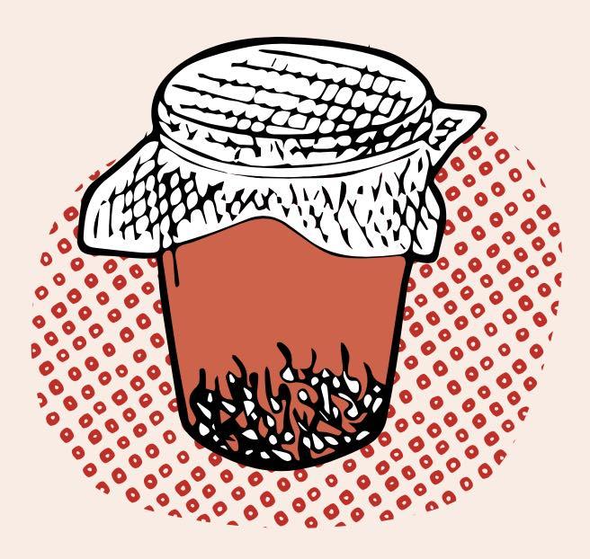 Germination de graines comestibles